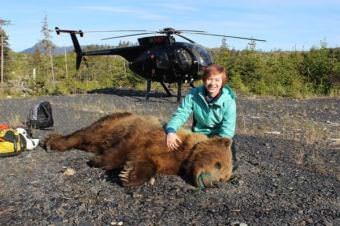 Jessica Rich poses with unconscious young male bear. (Photo courtesy of Jerry Belant/Mississippi State University)