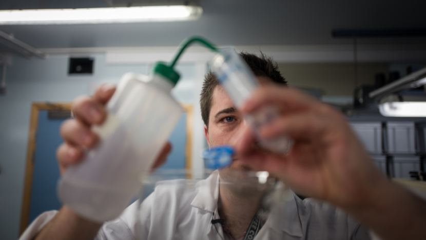 Dr. Matthew Cole, a researcher at the University of Exeter, England, works on an experiment about microplastics in zooplankton in the school's lab.