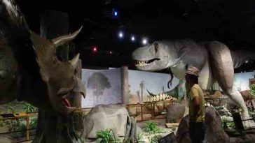 las-vegas-natural-history-museum-2-min
