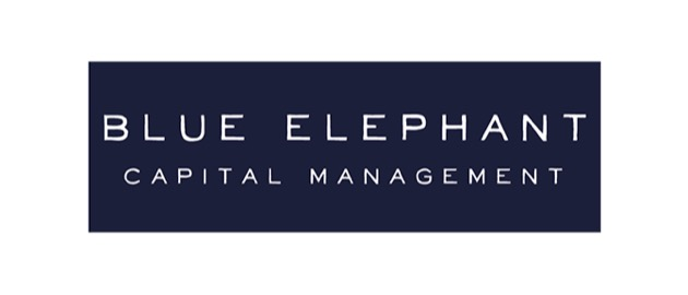 Blue elephant.psd th