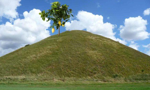 Lemmon Hill