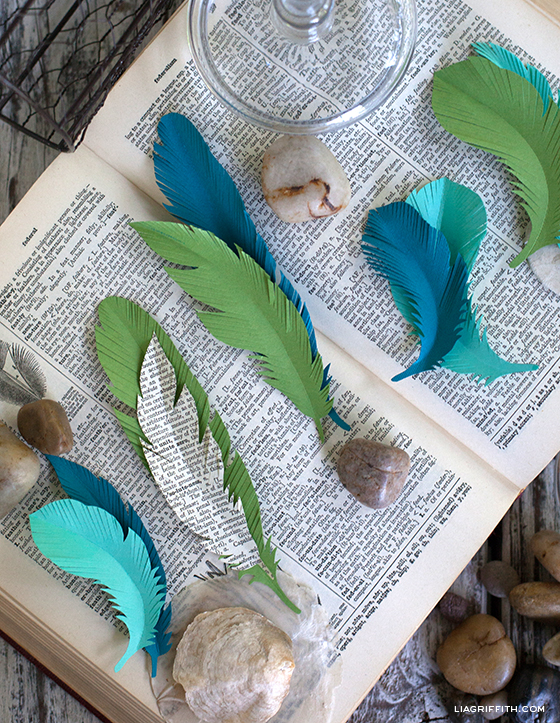 Paper Feather Signature Template - Lia Griffith