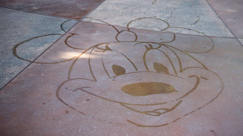 Brand Community Model Disneyland