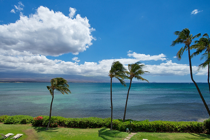 Maalaea Banyans- Oceanfront Condo (#310) photo