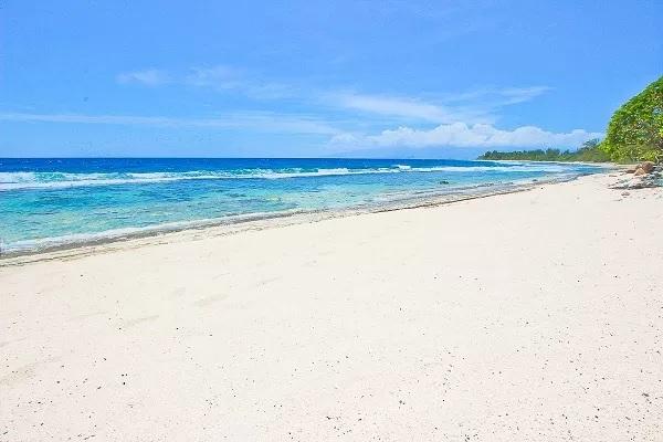 Temae Beach Cabin photo