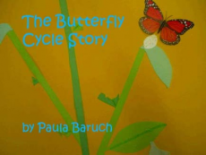 The Butterfly Cycle Story