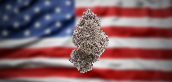 Cannabis accessible to most of America