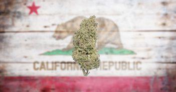 california-marijuana