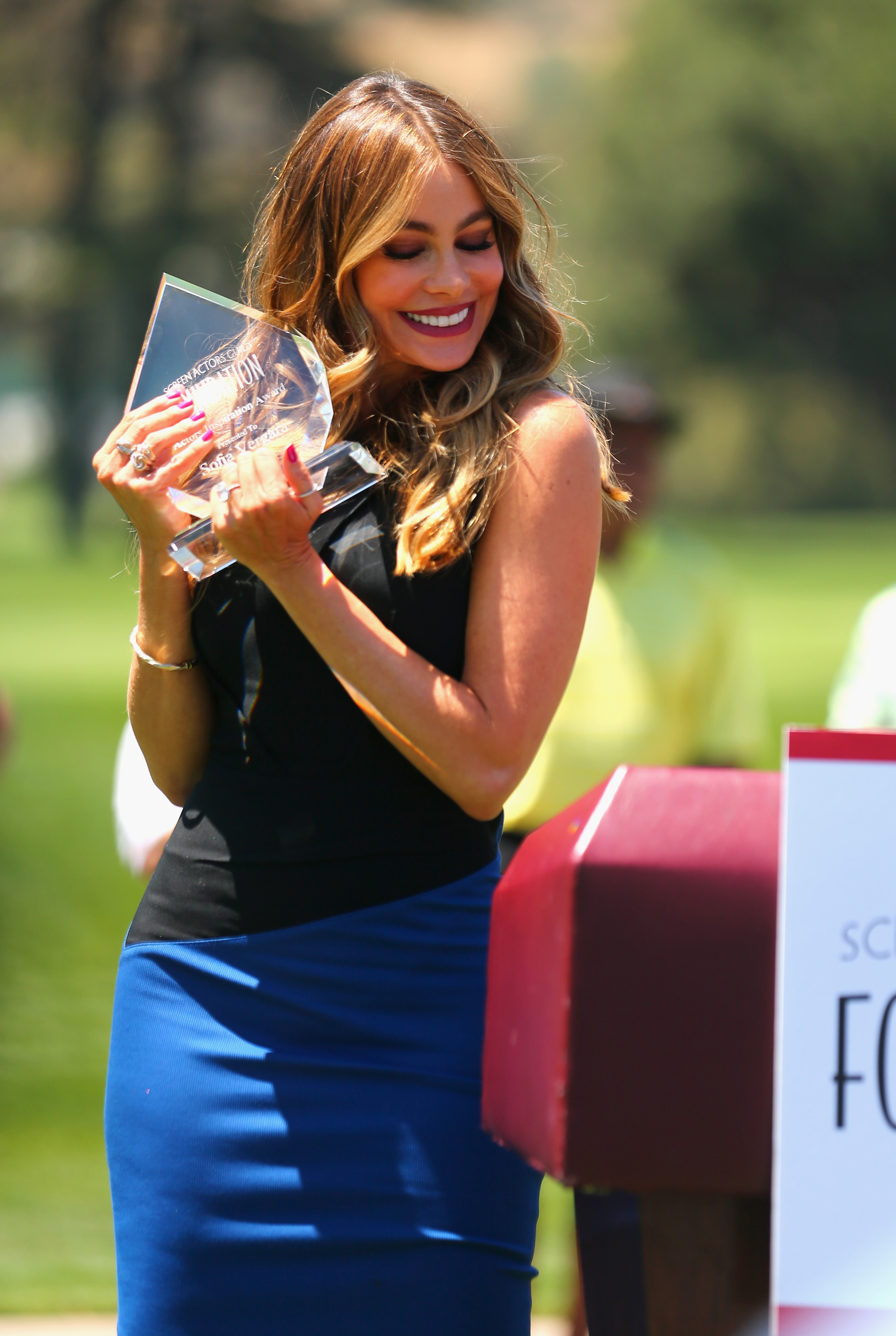 Honoree Sofia Vergara accepts the Inaugural Actors Inspiration Award at the Screen Actors Guild Foundation's 6th Annual Los Angeles Golf Classic on June 8, 2015 in Burbank, California.  (Photo by Mark Davis/Getty Images for The Screen Actors Guild Foundation)