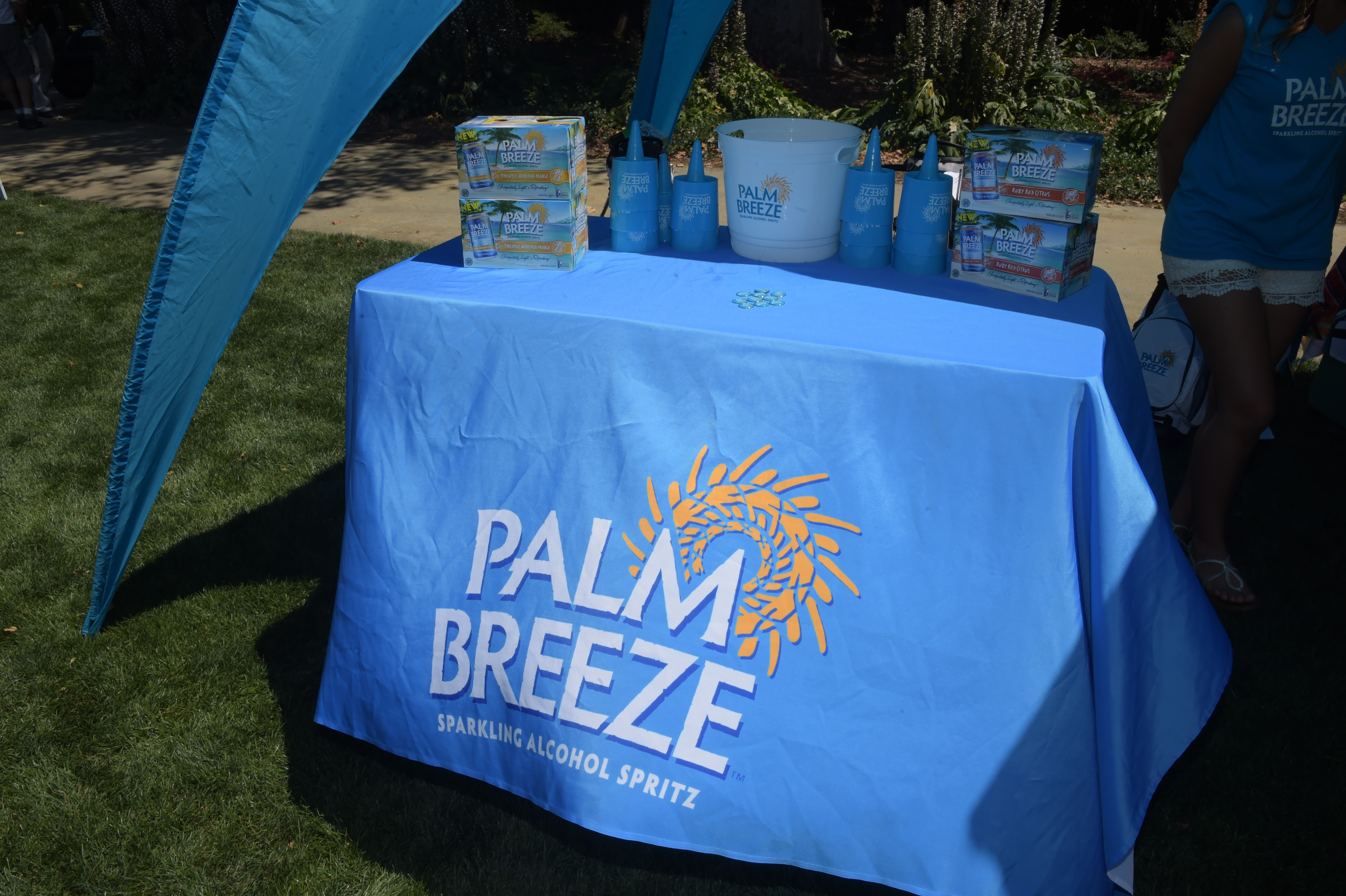 Palm Breeze sponsors The Screen Actors Guild Foundation's 6th Annual Los Angeles Golf Classic on June 8, 2015 in Burbank, California. (Photo by Jason Kempin/Getty Images for The Screen Actors Guild Foundation)
