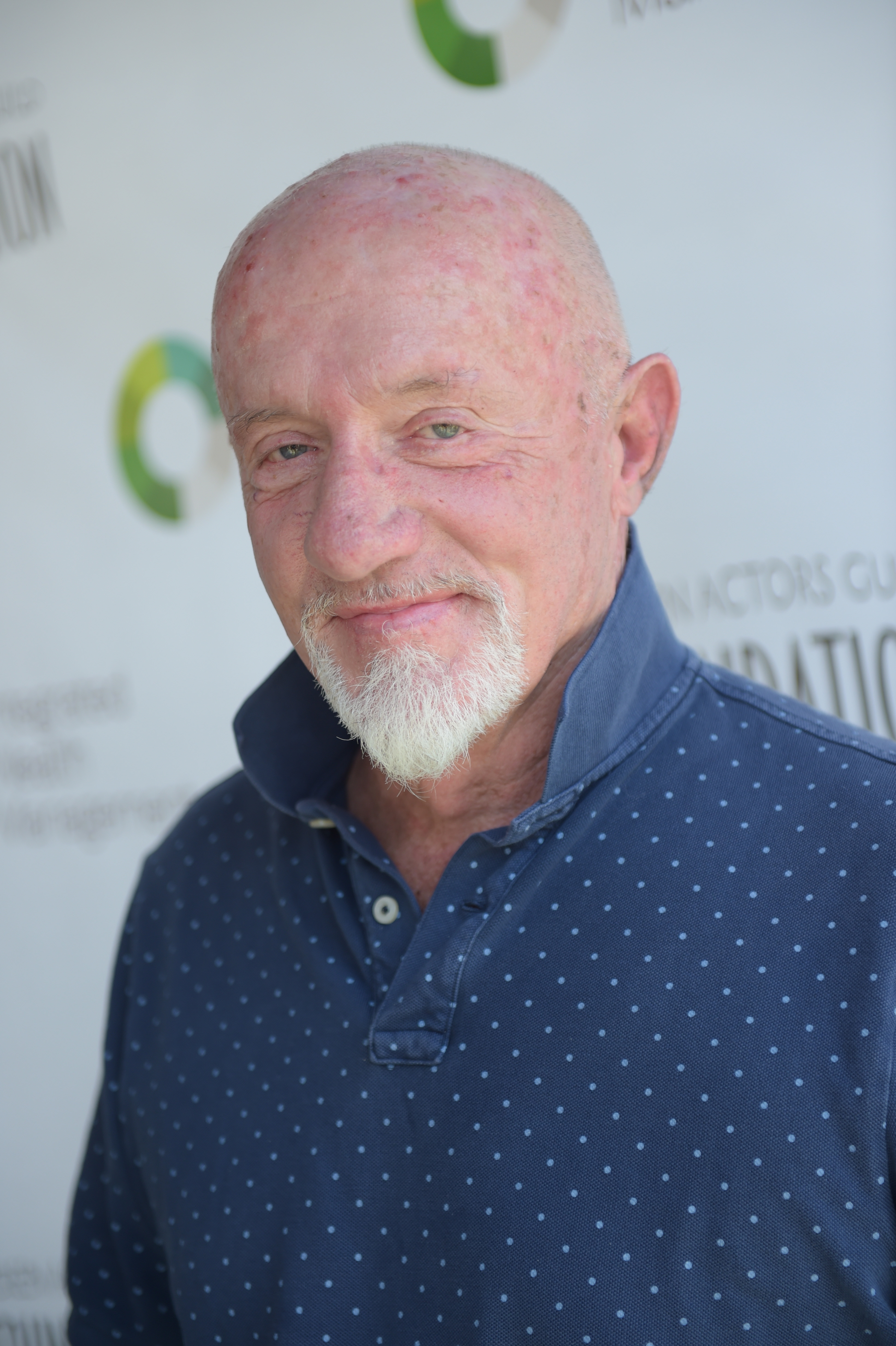 Actor Jonathan Banks attends the Screen Actors Guild Foundation's 6th Annual Los Angeles Golf Classic on June 8, 2015 in Burbank, California. (Photo by Jason Kempin/Getty Images for The Screen Actors Guild Foundation)