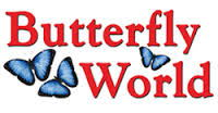 Butterfly-world