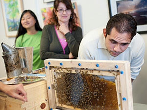 Whittier denizens get up a close-up look at a bee colony.