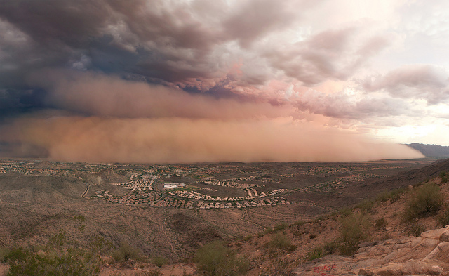 A dust storm envelops Phoenix this past July. Photo by Alan Stark, via Flickr creative commons.