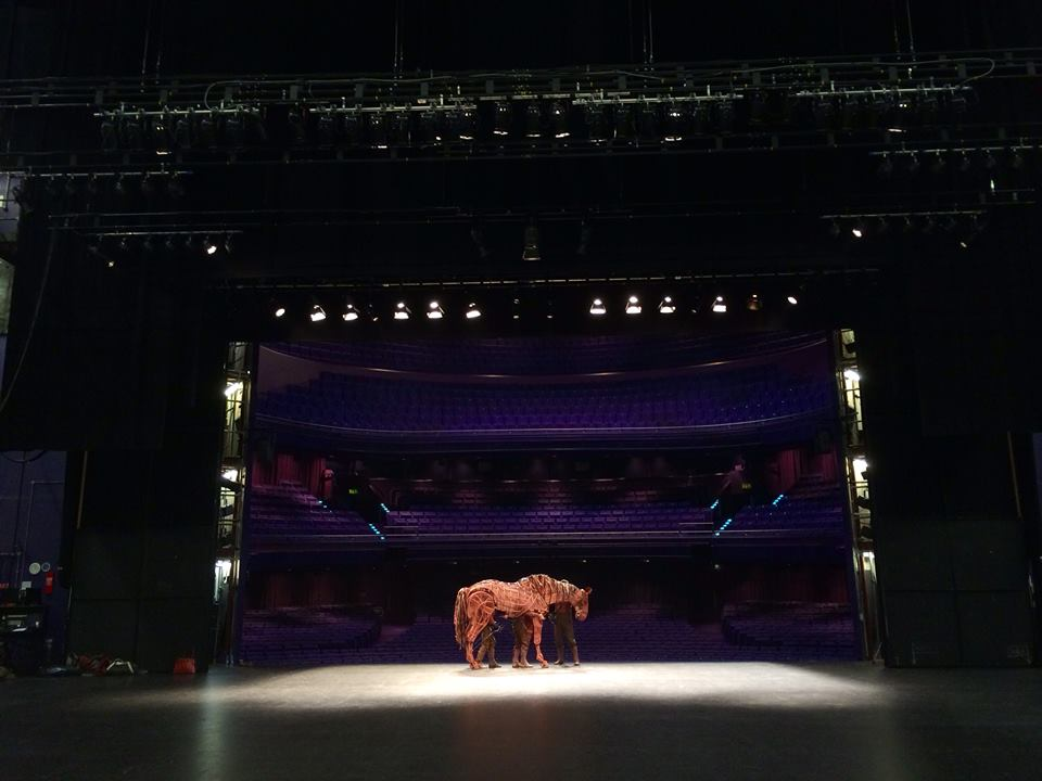 Catch War Horse on Friday or Sunday and save on tickets with your TAP card. Photo: War Horse Official Facebook