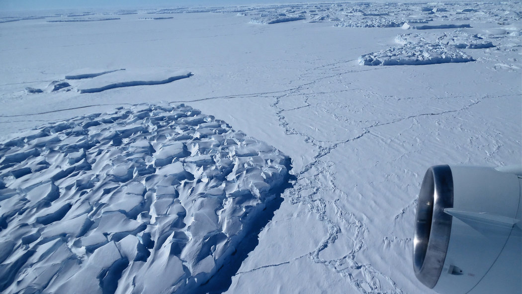 A view from a NASA airplane of large icebergs that have broken from the calving side of Thwaites Glacier in Antarctica in November 2014. A disaster scenario of West Antarctic ice sheet disintegration could occur much sooner than previously thought, new research suggests. Credit Jim Yungel/NASA