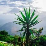 Lugares Donde Puedes Visitar Con Tu Familia En Matagalpa