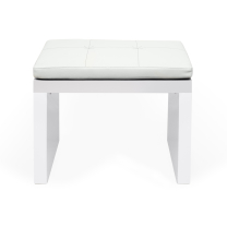 mirens - FLOAT BENCH 24 INCHES WIDE plus CUSHION