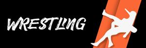 Wrestling 4x 100