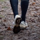 Take strides to better health during 'Step to it challenge'