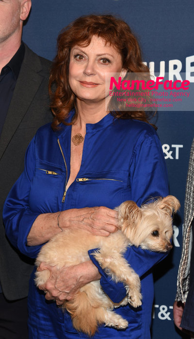 5th Annual Vulture Festival 2018 Second Day Susan Sarandon - NameFace Photo Agency New York City - hello@nameface.com - nameface.com - Photo by Daniela Kirsch