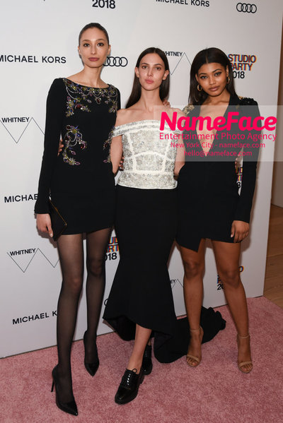 2018 Whitney Gala Sponsored By Audi Alexandra Agoston, Ruby Aldridge and Danielle Herrington - NameFace Photo Agency New York City - hello@nameface.com - nameface.com - Photo by Daniela Kirsch