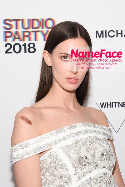 2018 Whitney Gala Sponsored By Audi Ruby Aldridge - NameFace Photo Agency New York City - hello@nameface.com - nameface.com - Photo by Daniela Kirsch