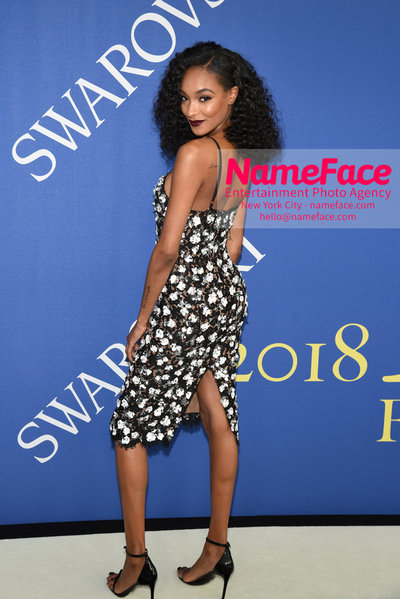 2018 CFDA Fashion Awards Jourdan Dunn - NameFace Photo Agency New York City - hello@nameface.com - nameface.com - Photo by Steve Eichner