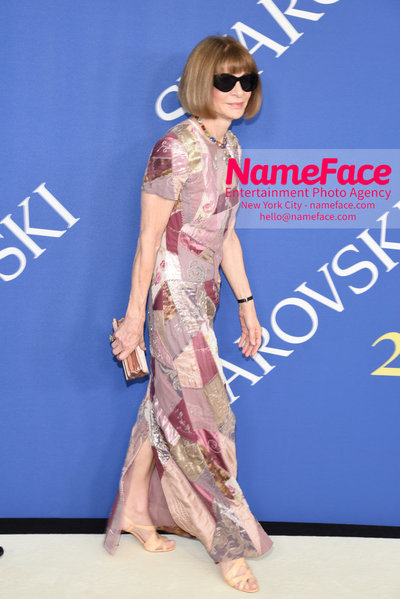 2018 CFDA Fashion Awards Anna Wintour - NameFace Photo Agency New York City - hello@nameface.com - nameface.com - Photo by Steve Eichner