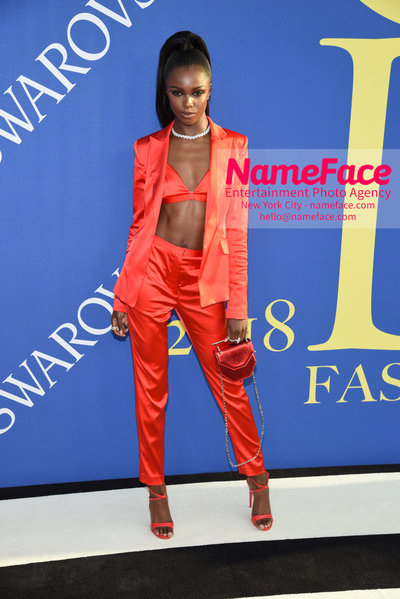 2018 CFDA Fashion Awards Leomie Anderson - NameFace Photo Agency New York City - hello@nameface.com - nameface.com - Photo by Steve Eichner