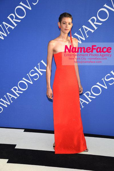 2018 CFDA Fashion Awards Dilone - NameFace Photo Agency New York City - hello@nameface.com - nameface.com - Photo by Steve Eichner