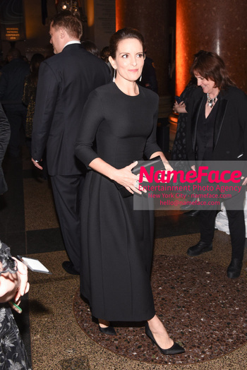 American Museum of Natural History Gala 2018, Arrivals Tina Fey - NameFace Photo Agency New York City - hello@nameface.com - nameface.com - Photo by Daniela Kirsch