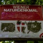 Maurerwald