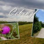 Impressionen vom Spaziergang am Cobenzl