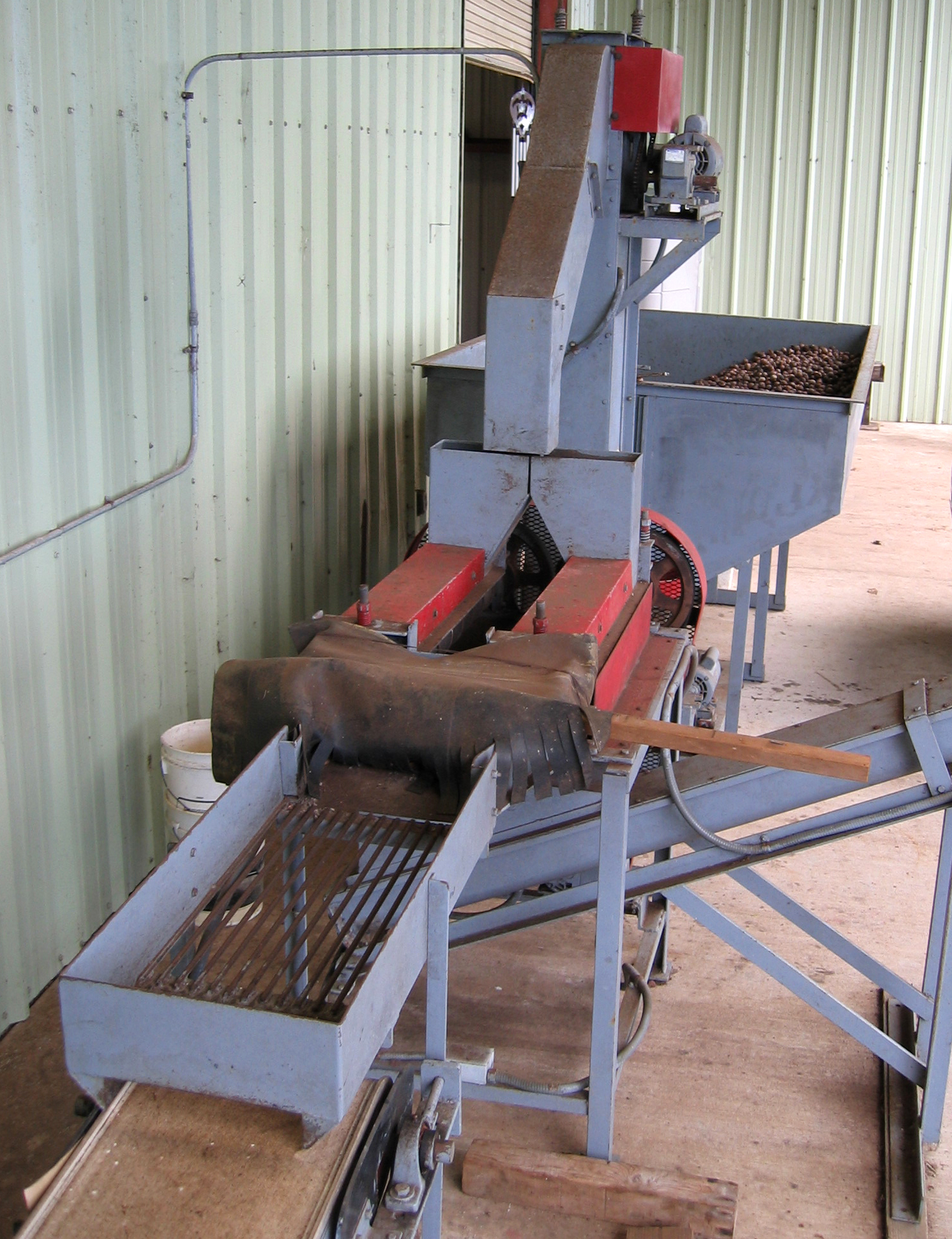 Macadamia integrifolia   - Machinery for removing the husk