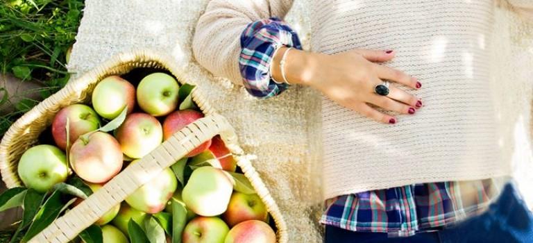 紐約周邊9大農場好推薦:一起在秋天摘蘋果吧