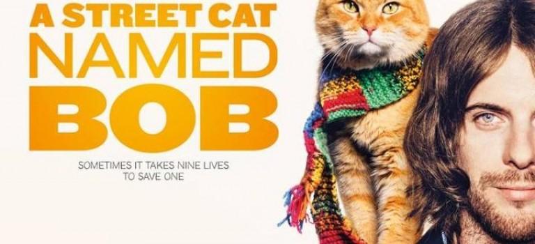今年最值得期待的暖心電影:遇見流浪貓BOB