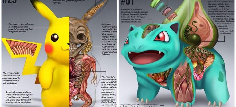 神奇寶貝解剖示意圖首次發佈:哇塞!它們的身體構造太酷了!