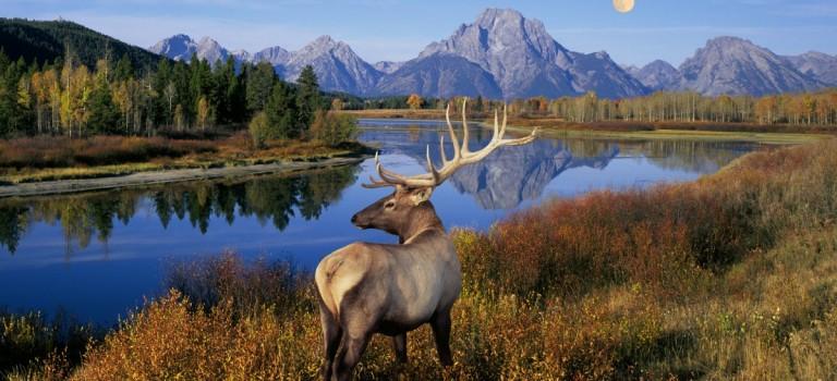 別宅啦!全美412個國家公園本週免費進:快快去擁抱大自然吧~