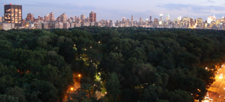 女子被性侵、男子被青少年團夥搶劫…請遠離夜晚的中央公園!
