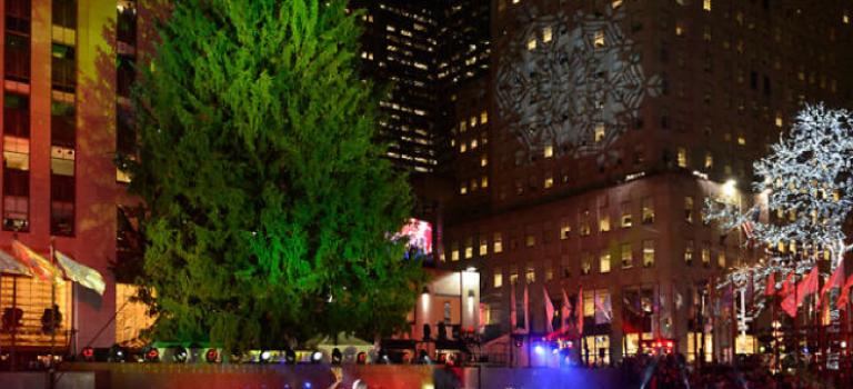 史上第二高聖誕樹正式進入洛克斐勒,月底點燈閃耀紐約!