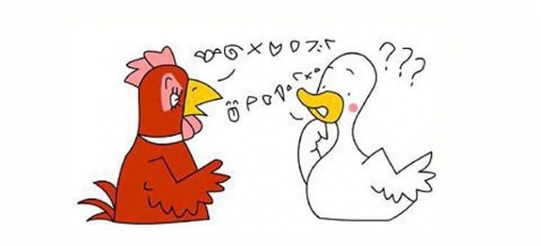 """雞年不再雞同鴨講!快來學學這些關於""""雞""""的英文"""