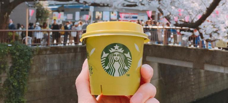 抹茶控必嘗!日本星巴克推出抹茶布丁,風靡Instagram