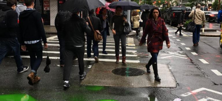 Oh no!奇怪綠色液體上週五惊現中城街頭😱😱!