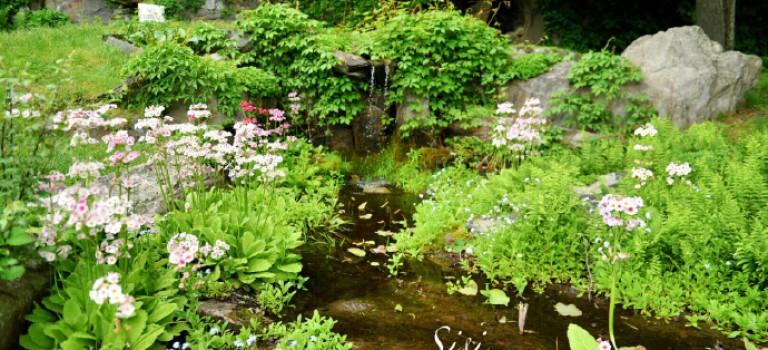 隱藏在紐約上週的神秘東方園林Innisfree Garden:美如仙境
