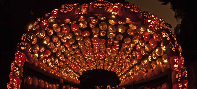 紐約最夯的萬聖節活動就要開始啦!7000+南瓜燈,太酷炫啦~