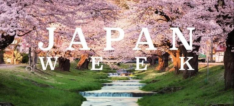 中央車站「日本周」今天開始,美食美酒還有免費相機送!
