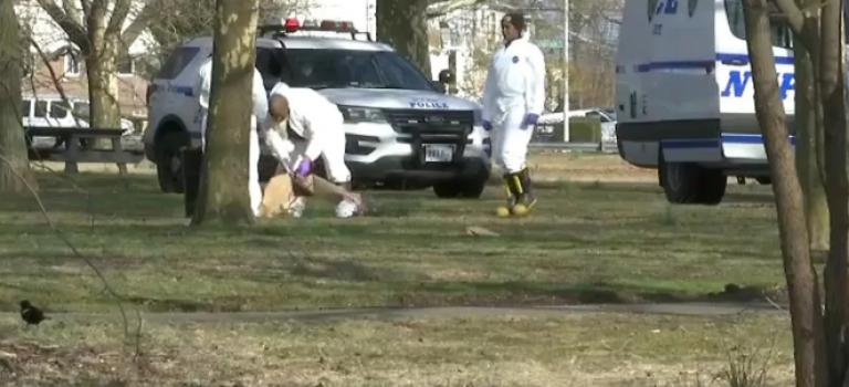 惊悚!纽约公园惊现赤裸女尸,四肢均被残忍砍下!
