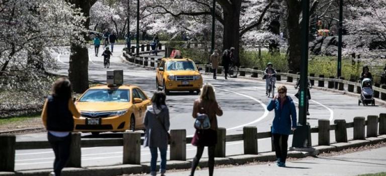 霸气!中央公园今夏开始将永久禁止车辆驶入