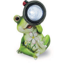 Garden Frog with Solar Lamp